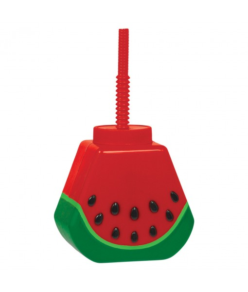 Wonderful Watermelon Fun Sippy Cup - 1 pc