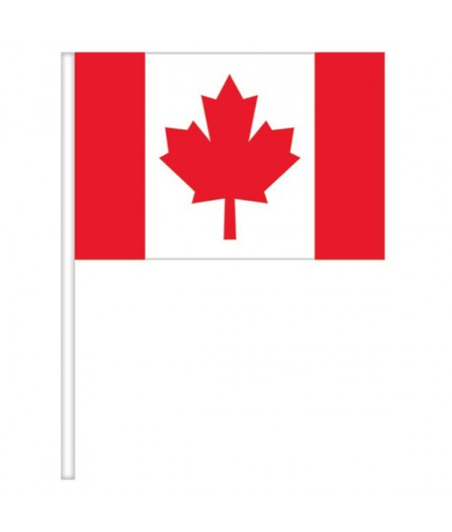 """""""Canada Day"""" Party Flags, 4"""" x 6"""", 4 Ct."""